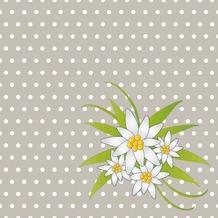 Duni Servietten 3-lagig Motiv Edelweiss Grey 33 x 33 cm 20 Stück