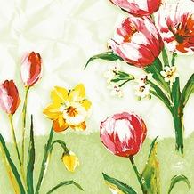 Duni Zelltuchservietten Red Tulip 33 x 33 cm 250 Stück