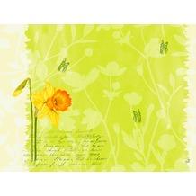 Duni Dunicel® Tischsets Spring Flowers 30x40 cm 100 Stück