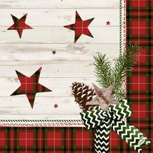 Duni Dunilin Servietten Naturally Christmas 40x40 cm 1/ 4 Falz 50 Stück
