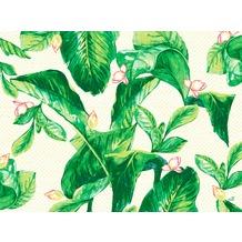 Duni Papier-Tischsets Banas 30 x 40 cm 250 Stück
