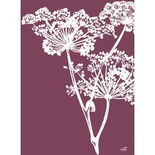 Duni Papier-Tischsets Yarrow 30 x 40 cm 250 Stück
