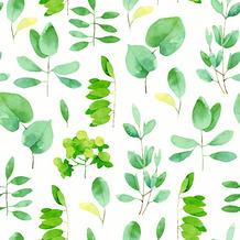 Duni Servietten Tissue Fresh leaves 24 x 24 cm 20 Stück