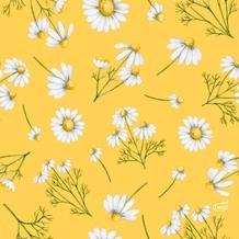 Duni Tissue Servietten Pretty Daisy Yellow 33 x 33 cm 20 Stück