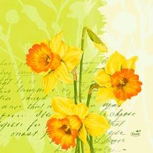Duni Zelltuch Servietten Spring Flowers 33x33 cm 3lagig, 1/ 4 Falz 250 Stück