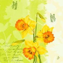 Duni Zelltuch Servietten Spring Flowers 40x40 cm 3lagig, 1/ 4 Falz 250 Stück