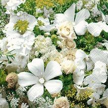 Paper+Design Servietten Tissue Floral dream 33 x 33 cm 20er