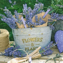 Paper+Design Servietten Tissue Lavender decoration 33 x 33 cm 20er