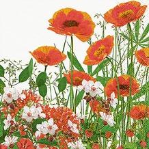 Paper+Design Servietten Tissue Red meadow 33 x 33 cm 20er